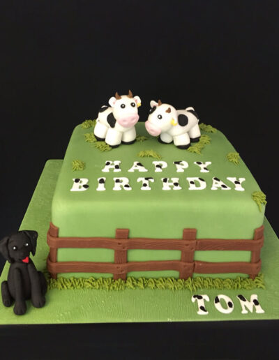 farm-birthday-cake